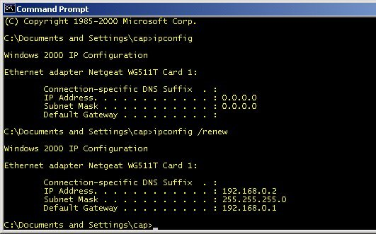 ipconfig /renew in a Command Prompt window